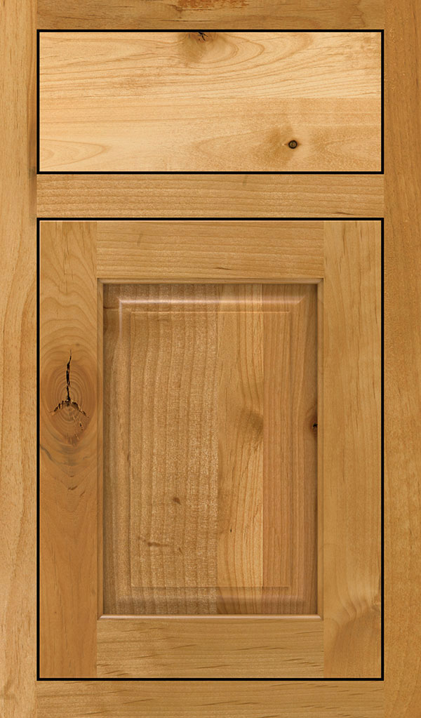Plaza Rustic Alder Inset Cabinet Door in Natural