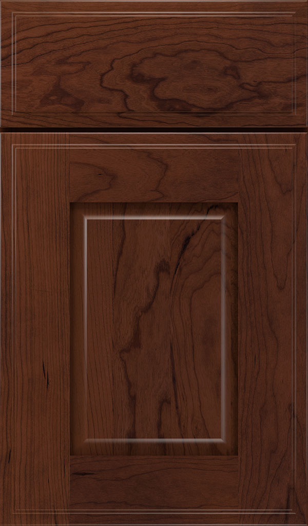 Toulan Cherry Raised Panel Cabinet Door in Sepia