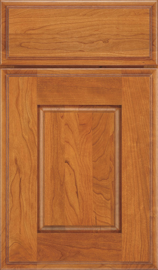 Toulan Cherry Raised Panel Cabinet Door in Wheatfield Bronze
