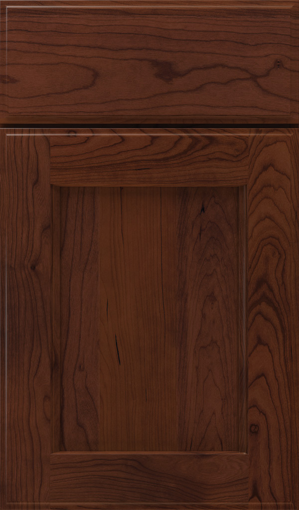 treyburn_cherry_recessed_panel_cabinet_door_sepia