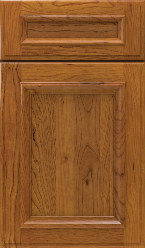 Yardley 5 Piece Cherry Raised Panel Cabinet Door in Pheasant