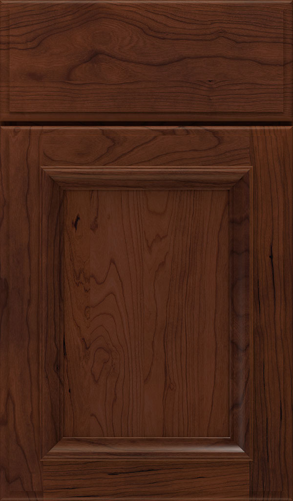 Yardley Cherry Raised Panel Cabinet Door in Sepia